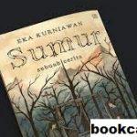 Review Buku Yang Berjudul Sumur