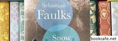Review Buku Snow Country Dari Sebastian Faulks